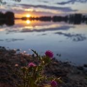 Sonnenaufgang Silbersee, Romantisch, Farben, Sunrise, Lake, See, Sonne, Sun, Clouds, Wolken, Strand, Beach, Shadows, Schatten, Contrast, Kontrast