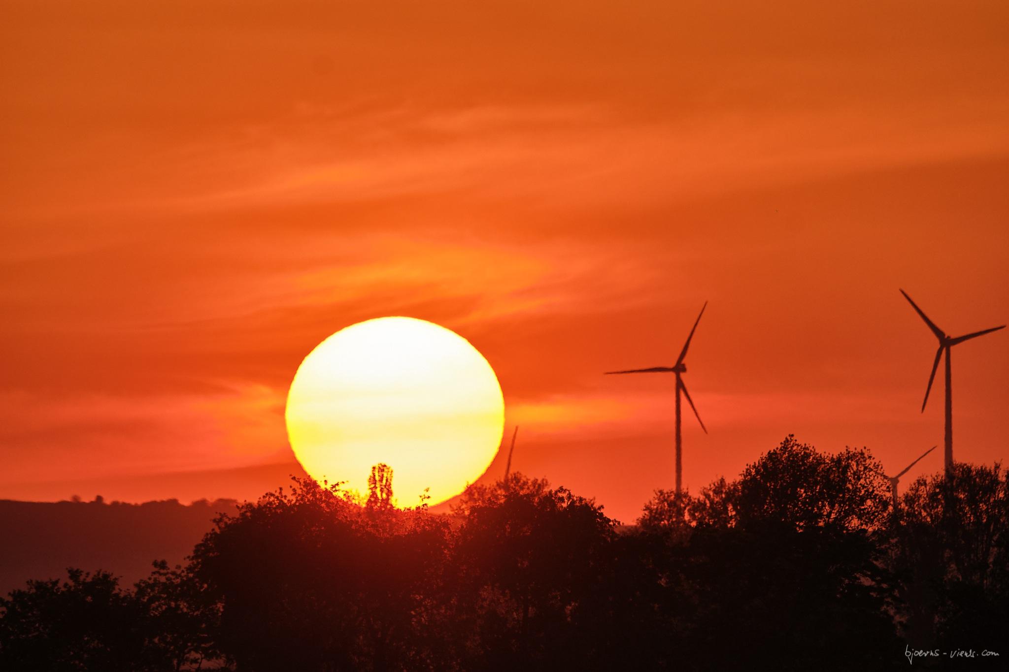 Spaziergang, Bobenheim-Roxheim, Abend, Sonne, Sonnenuntergang, Sun, Sunset