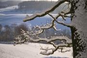 bjoernsviews, Fuji, Capture one, Odenwald, Sonnenaufgang, Timelapse, Nacht, LIchter,