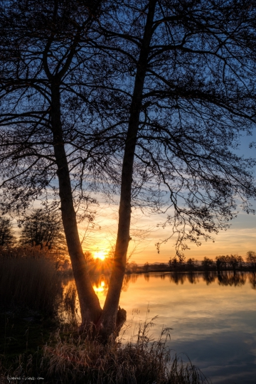 Sonnenuntergang am Niederwiesenweiher