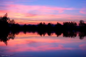 Blau rote Stunde am Niederwiesenweiher